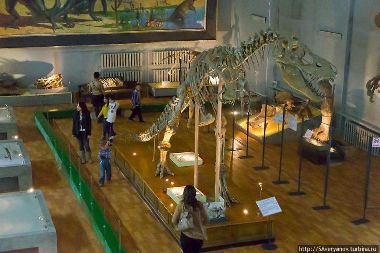 Улан Батор музей динозавров