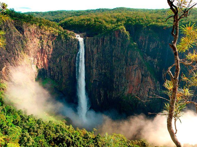 Поездка в Австралию Парк природы