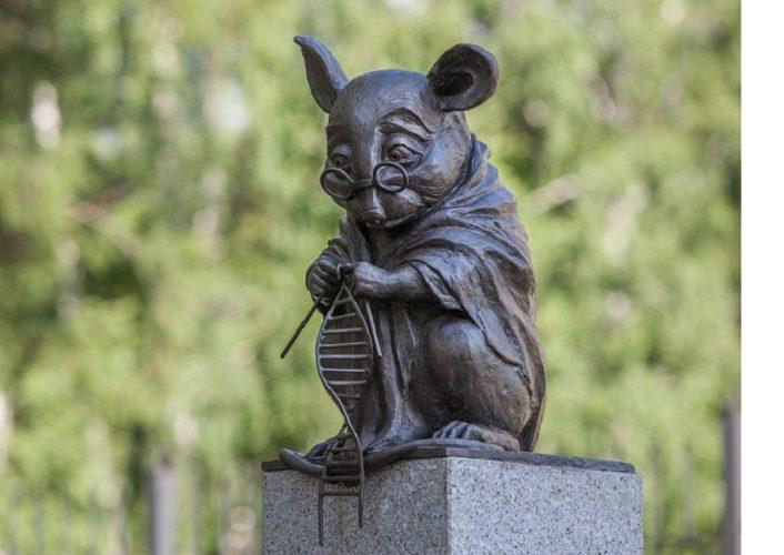 Новосибирск памятник лабораторной мыши