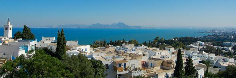 Тунис панорама