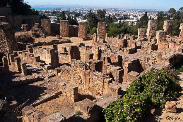 В тунисской столице