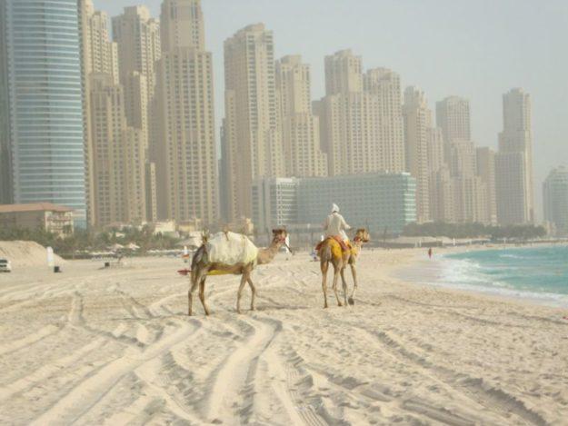Дубай климат