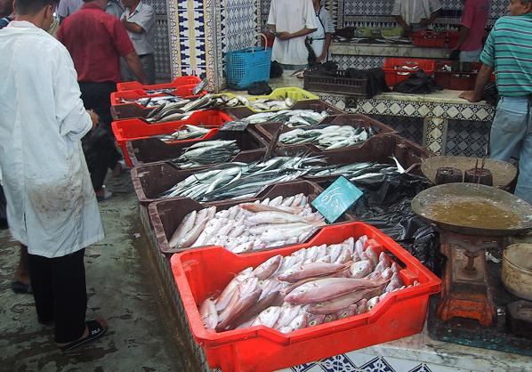 Махдия рыбный рынок