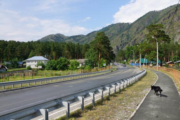 Чемальский район Чуйский тракт